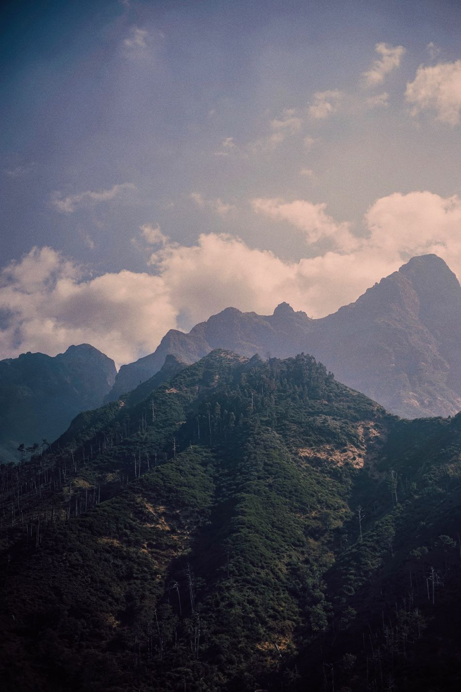 Views of Madeira. Mountain Mountain Range Scenics Sky Tranquil Scene Nature Majestic Outdoors The Week Of Eyeem Adventure Landscapes Portugal Madeira Cloud Beauty In Nature Road Tourist Valley Solitude Cloudy Nature Vacations TakeoverContrast