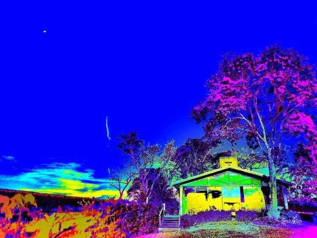 Avaré SP BRASIL ☀️ 🐎 🇧🇷 Landscape_Collection The Great Outdoors - 2015 EyeEm Awards EyeEm Gallery Hdr_Collection Enlight EyeEm All_shots #Portrait #Vscocamphotos #Likesforlikes #Photographs #Photographylovers #TopLikeTags #Outdoorphotography #Likesreturned #Silhouette #Likeforlike #Art #Contrast #Landscaped #TagStaGram #love #friends #tagstagram #photooftheday #selfie #amazing #f Usa #igersusa #ig_unitedstates #rockin_shotz #just_unitedstates #insta_crew #gf_usa #nature #rsa_rural #instagramhub #allshots_#world_shooters #insta_america #ig_captures #centralfeed #webstagram #ic_landscapes #wonderful_america #storyofamerica #instagra HDR Photography