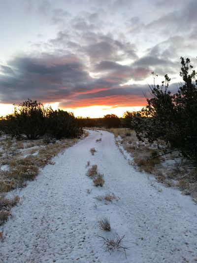 """""""Snow Night To Snow Day"""" An overnight light snowstorm brings its awesome beauty at sunrise in The Central Highlands Of New Mexico where one of the driest Winters anyone can recall begs for moisture of any kind. Country Road Snow Day Sunrise Sky Cloud - Sky Nature Tranquil Scene Beauty In Nature Scenics Snow Landscape Shades Of Winter"""