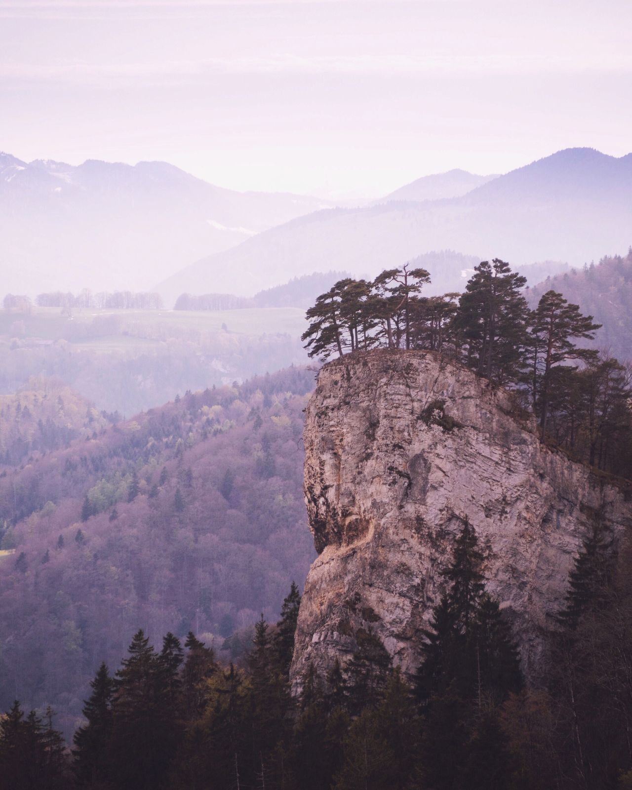 Mountain Nature Beauty In Nature Tree Tranquility Scenics Tranquil Scene Mountain Range Day Outdoors Landscape No People Forest Sky The Great Outdoors - 2017 EyeEm Awards at Belchen Switzerland