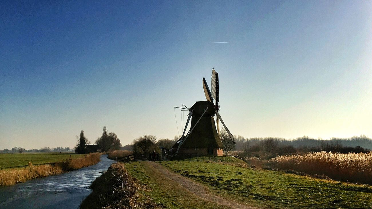 Windmill Wind Power Renewable Energy Wind Turbine Alternative Energy Traditional Windmill Clear Sky Environmental Conservation Tree Rural Scene Fuel And Power Generation Nature No People Sky Built Structure Beauty In Nature Day Outdoors Landscape Water