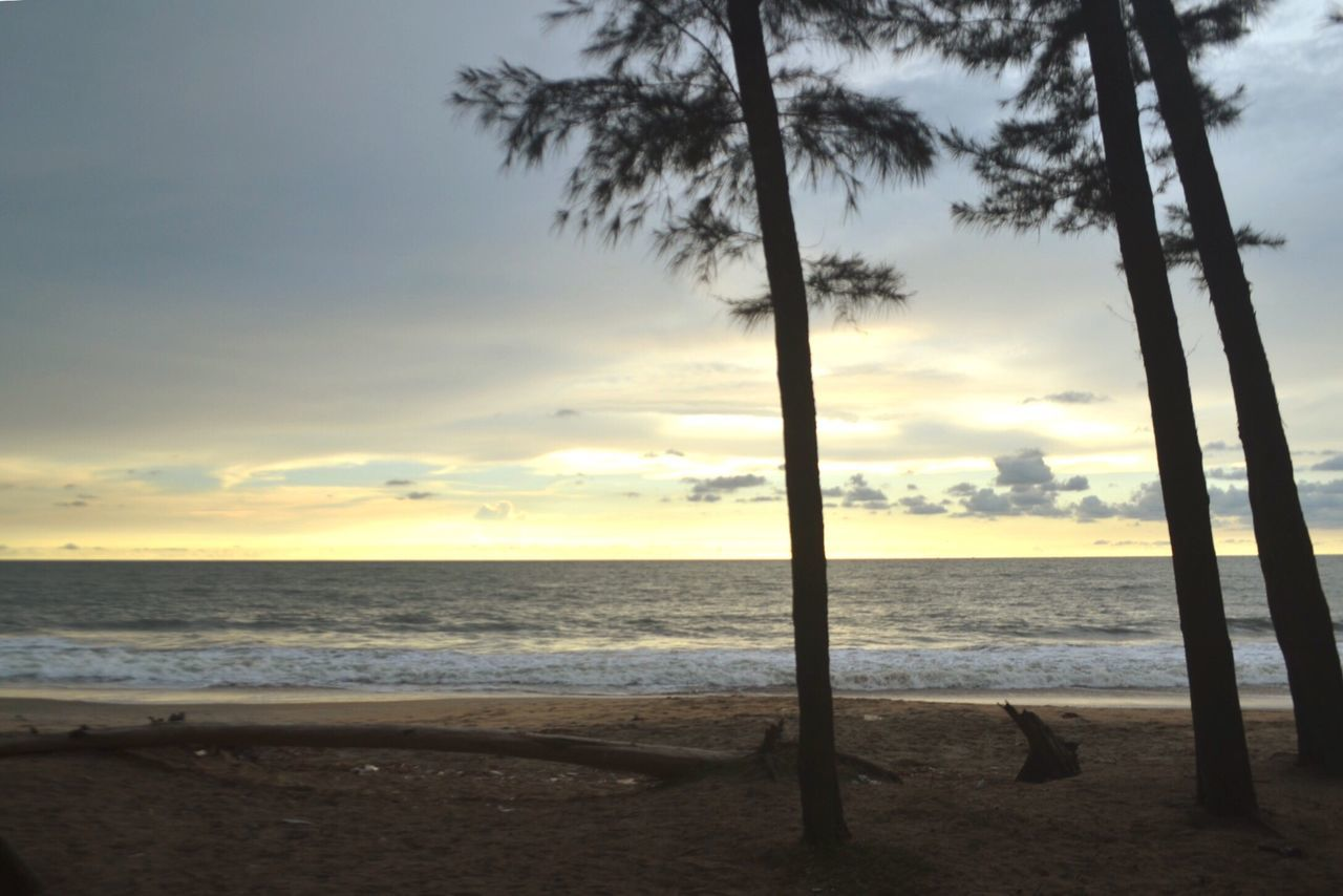 Being A Beach Bum Sea Relaxing Periyambalam Beach Beach Beach Photography Sea And Sky Beautiful Sky Enjoying The Sun Trees