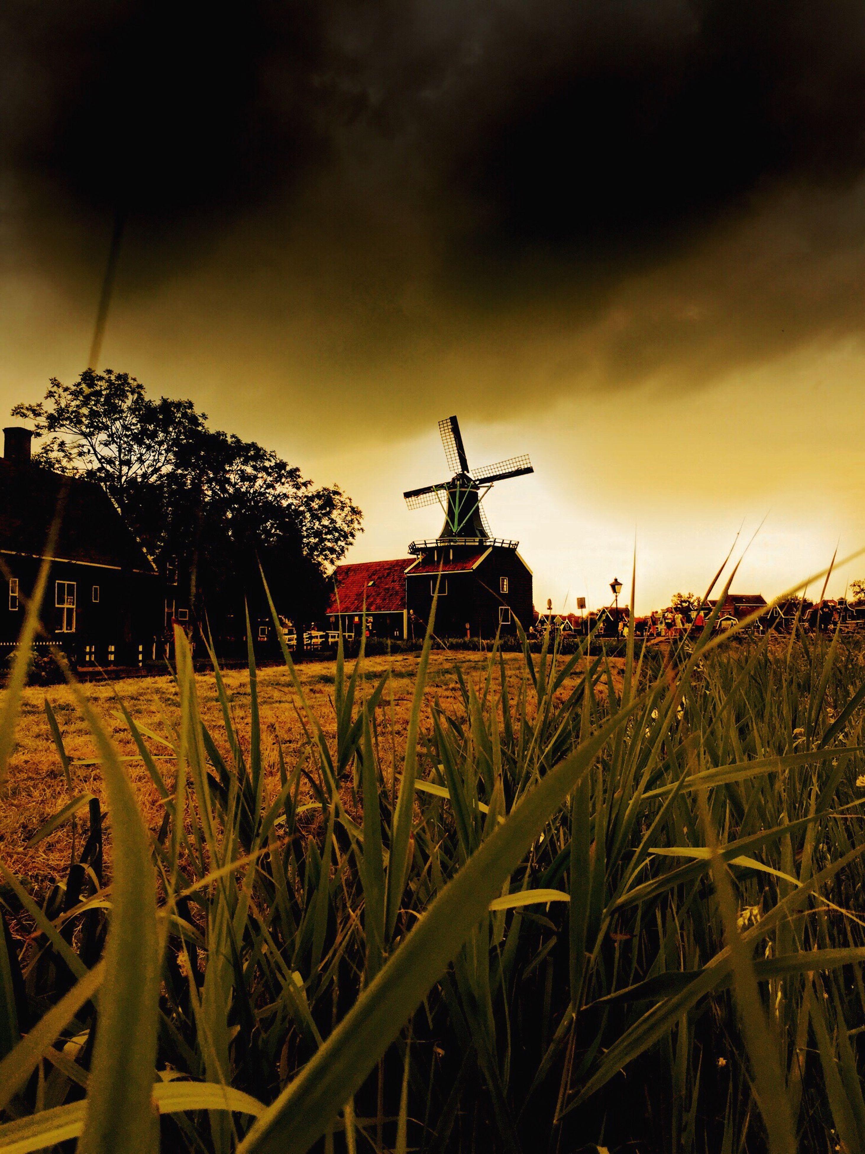 sky, field, sunset, cloud - sky, rural scene, building exterior, grass, built structure, cloudy, landscape, windmill, architecture, wind power, nature, plant, dusk, alternative energy, renewable energy, agriculture, cloud