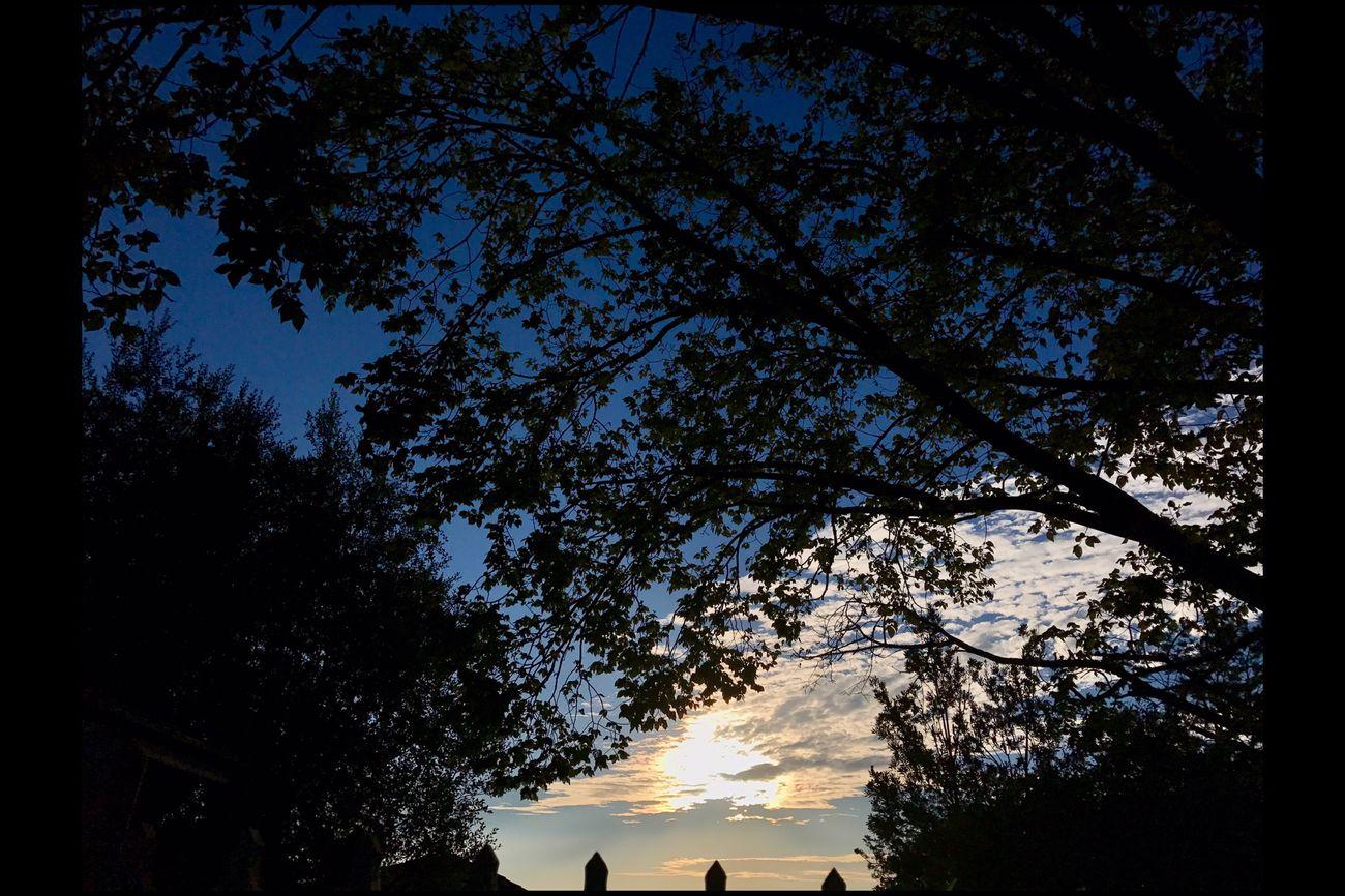 Tonight's sunset ☀️ EyeEm Sunset EyeEm Best Shots