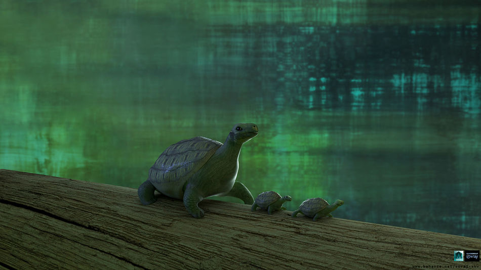 3D Art 3d Lighting 3d Rendering After Effect Animals In The Wild Compositing Day Lighting Maya Nature Nature Nature Beauty Nature Lover Nature Photography Nature_collection Naturelover Naturelovers One Animal Outdoors River Tortoise Tortoise Shell Tree Vray Vray Render