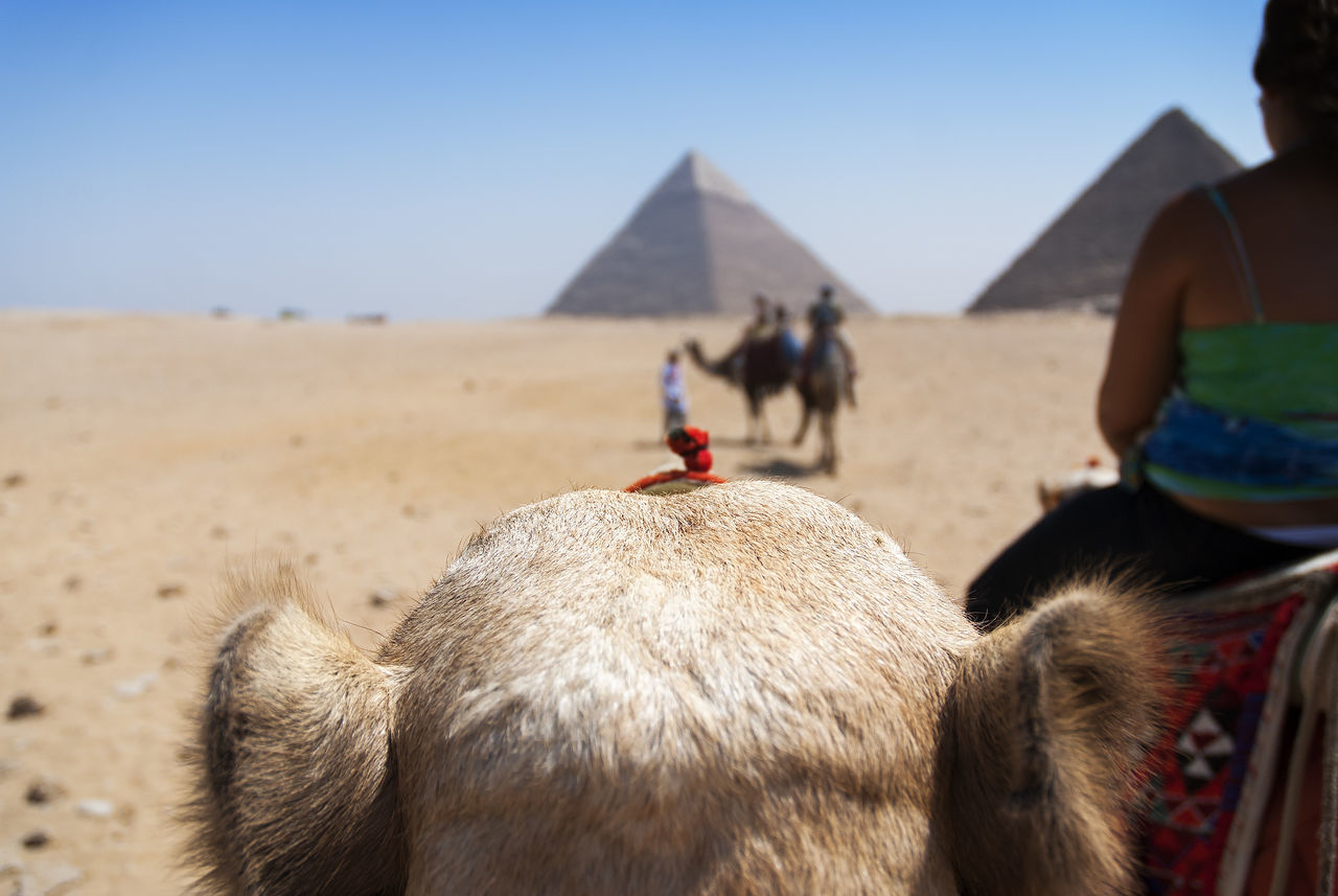 Beautiful stock photos of ägypten, Ancient, Ancient Civilization, Ancient Egyptian Culture, Ancient History