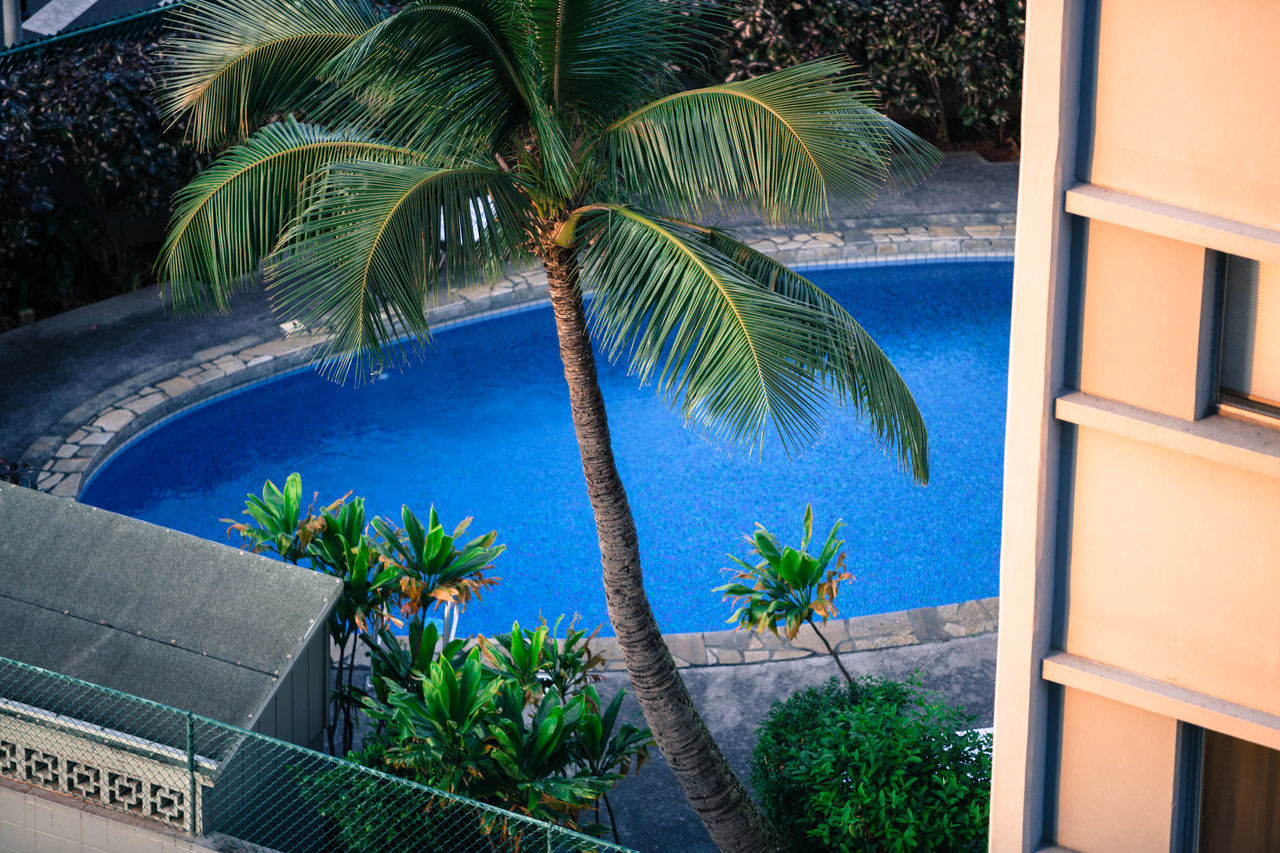 palm tree, swimming pool, tourist resort, tree, plant, luxury, balcony, vacations, tranquil scene, day, no people, blue, outdoors, luxury hotel, nature, scenics, architecture, water, sky, beauty in nature
