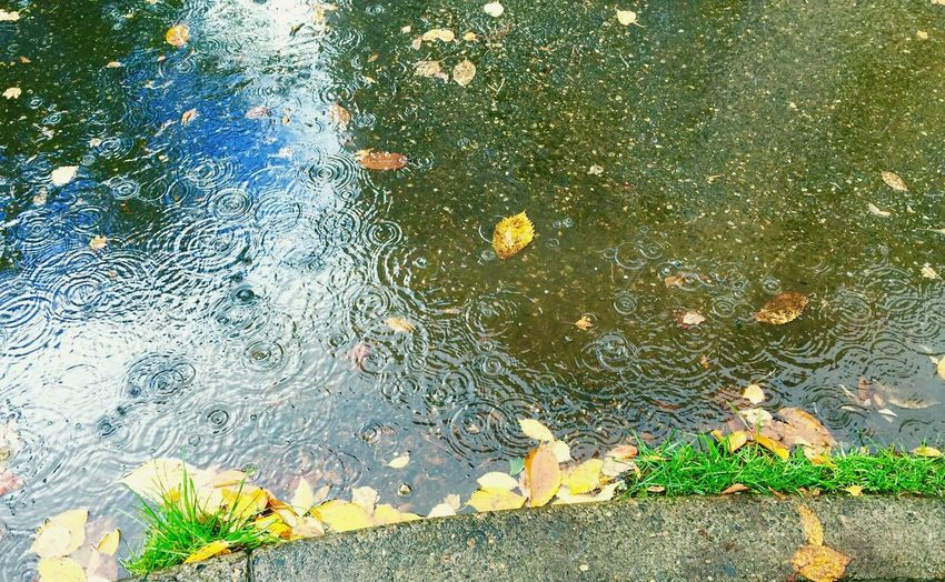 Rain Water Reflections Walking Around Streetphotography Downtown Cityscapes How's The Weather Today? Fresh Great Atmosphere Walking Around
