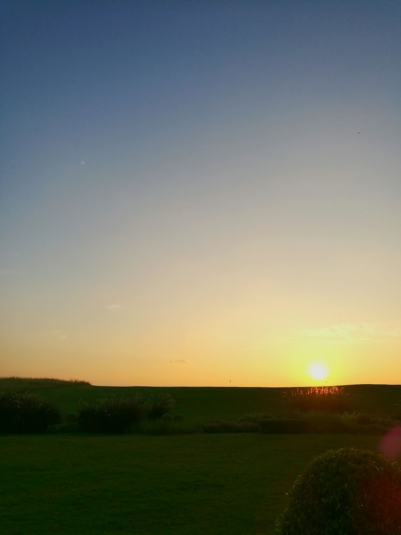 Nature Sunrise Sky Beauty In Nature Tranquil Scene Landscape Rural Scene Outdoors No People Day Wake UpSunset Morningsun Morning Sunlight And Shadows Winter Scenics