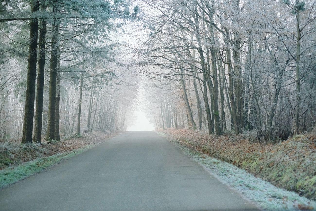 Cold on the road Road Fujifilm X-pro2 Winter