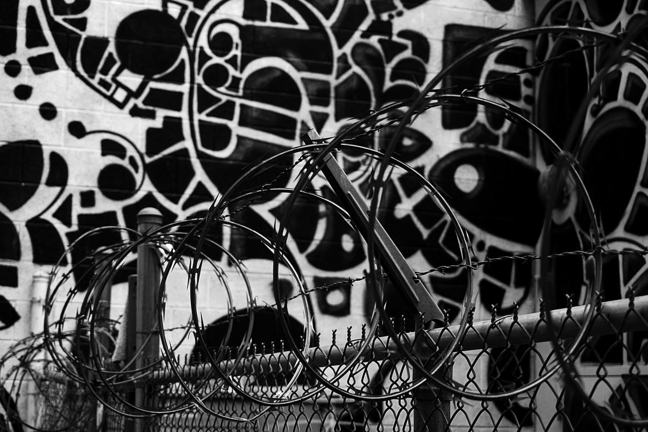 Barbed Wires Against Wall With Graffiti