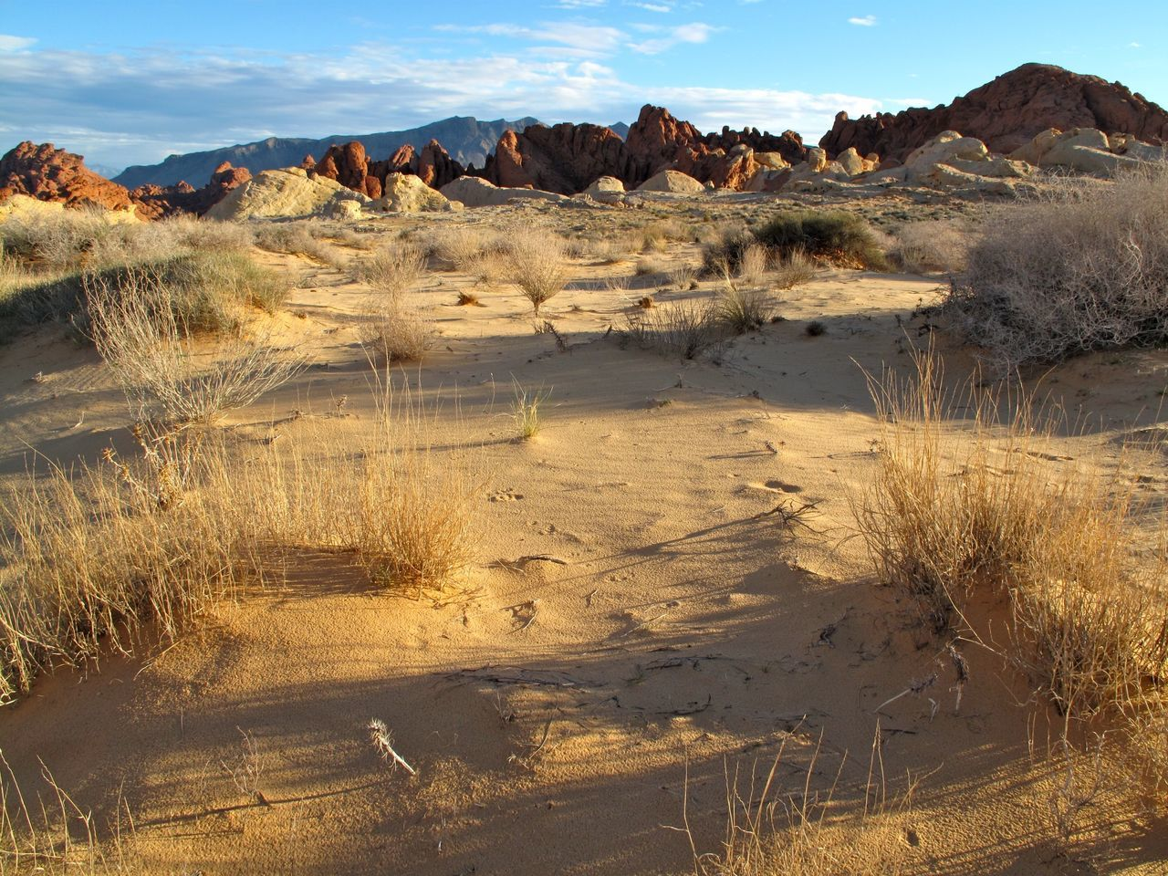 Beautiful stock photos of las vegas, Barren, Beauty In Nature, Day, Desert