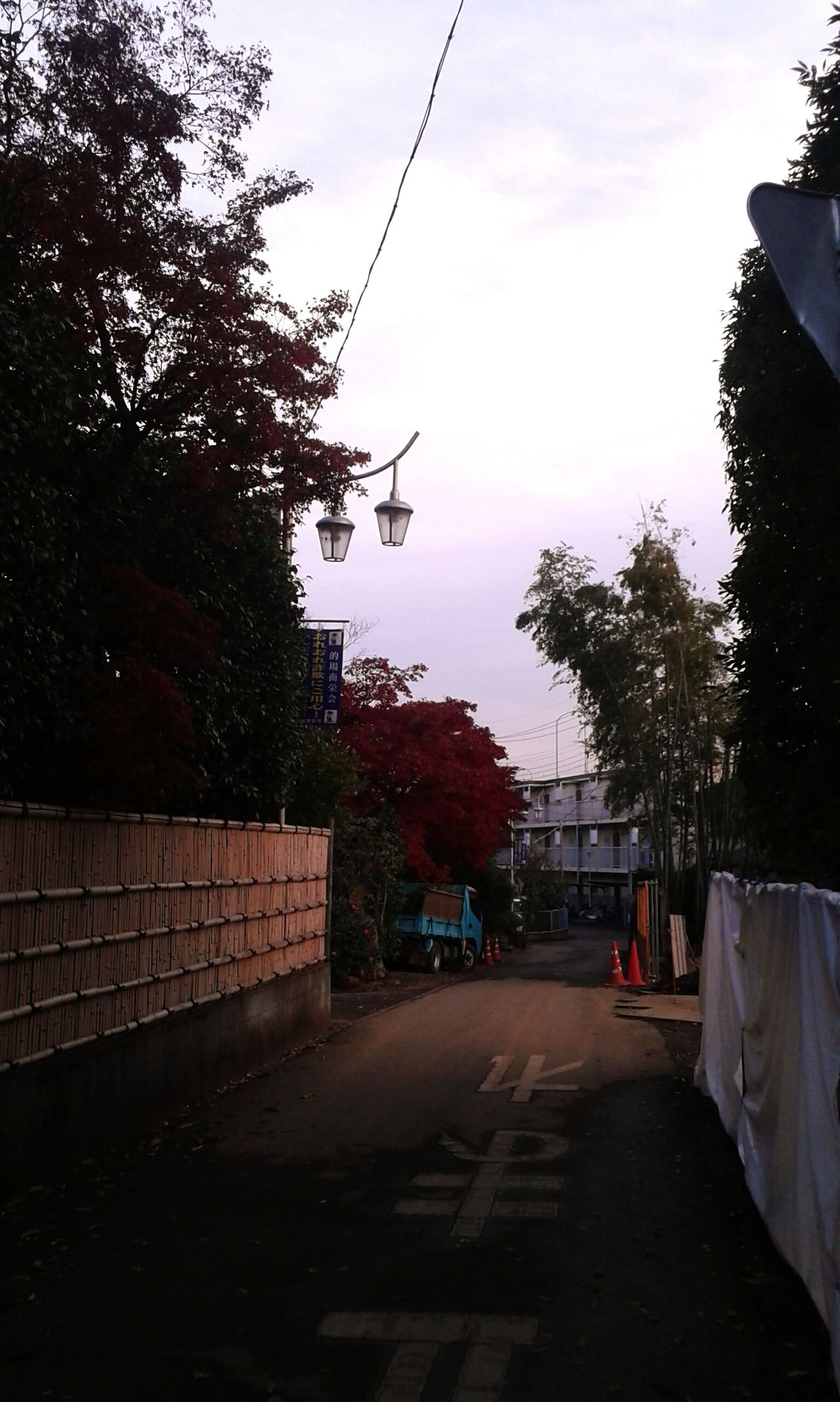 Japan Neighborhood Fall Autumn Tree Sky Cloud - Sky Wet Outdoors City Road Day No People Nature Afternoon
