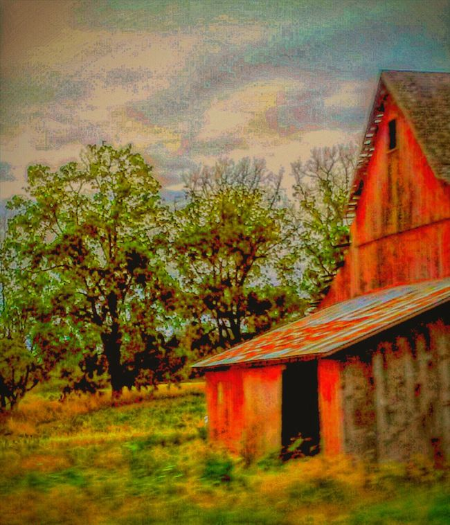 Reworked  Taking Photos Check This Out Reedited Love Of Photography 43 Golden Moments Old Barns Beauty Overgrown In The Country Oregonexplored Overgrown And Beautiful Drive By Photography EyeEm Gallery Barnhouse The OO Mission Barnology If These Walls Could Talk On My Way Fine Art Photography Loving The Past Hostory Old Barn Collection