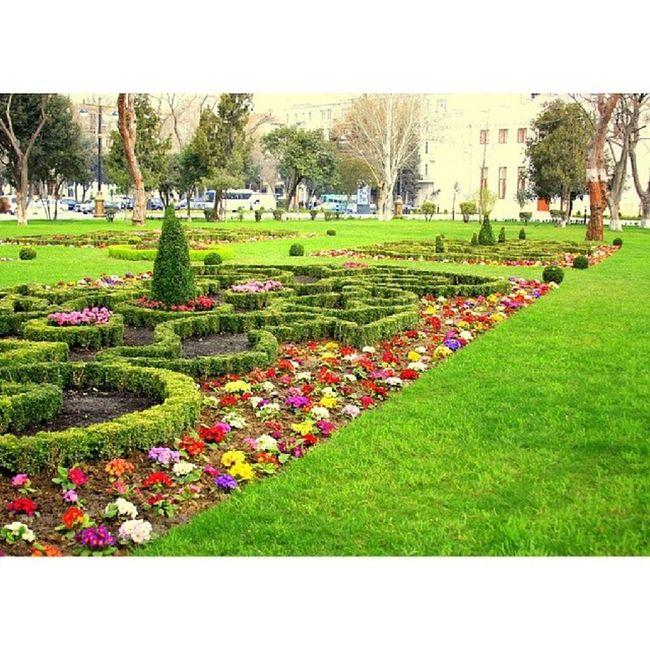 Igersazerbaijan Igersbaku Instagramazerbaijan Amazing aztagram azerbaijan artaztagram art a b baku bakufollow f4flook love photo pink