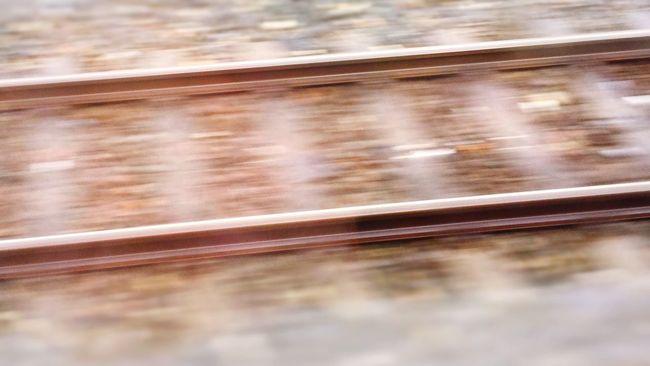 Life Train Travel 火車 鐵道 EDP。P