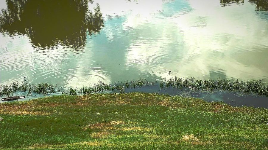 Water Reflection Nature No People Backgrounds Beauty In Nature Watercircles Sultryafternoon