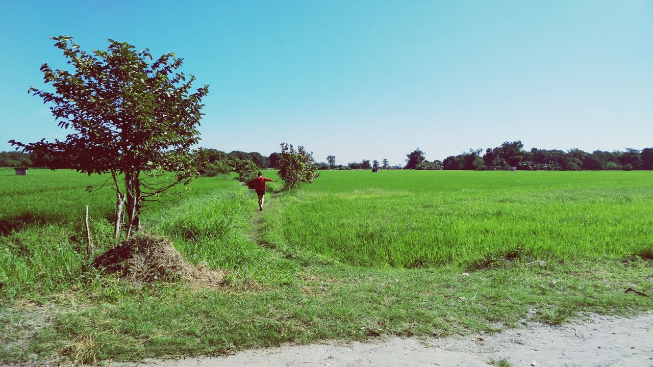 Thefarmlife Farmer's Daughter EyeEm Nature Lover Eyeem Philippines