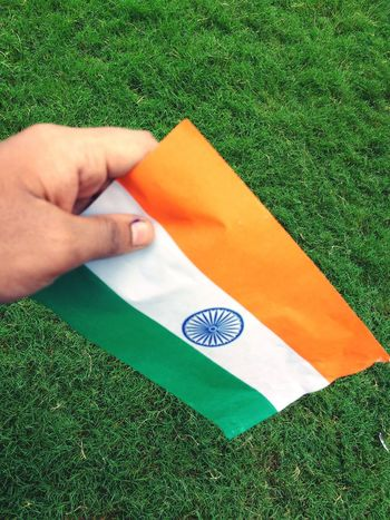 HAPPY INDEPENDENCE DAY TO ALL MY INDIANS Green Color Human Body Part Human Hand One Person One Man Only Textile Grass Paper Adult Men People Only Men Day Indoors  Adults Only Close-up Independence Day No People Indian Indiapictures Indie Holi Flags Flags In The Wind  Flags In The Wind