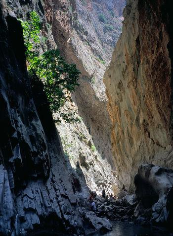 Canyon Nature River Rock Saklikent Saklikent Canyon Saklıkent Saklıkent National Park Travel Destinations Tree Turkey