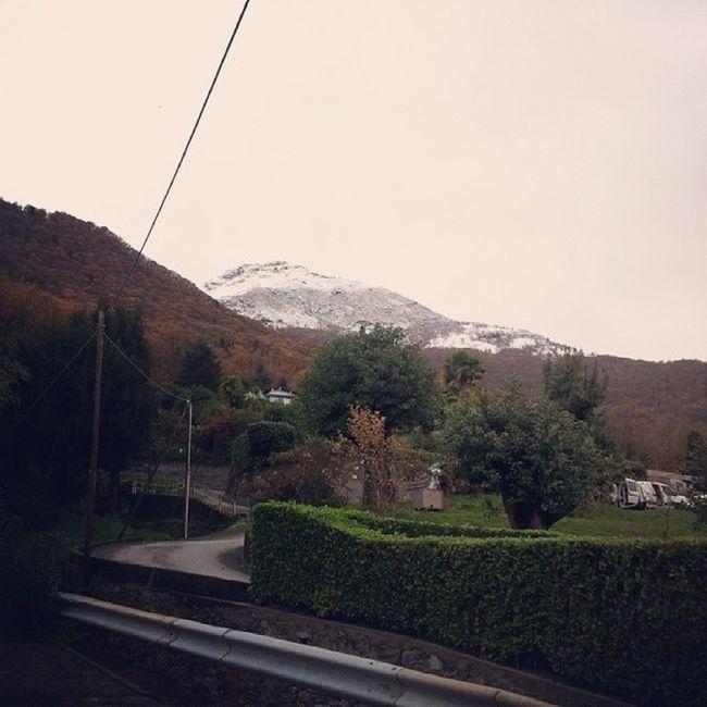 Snow Mountain Morissolo