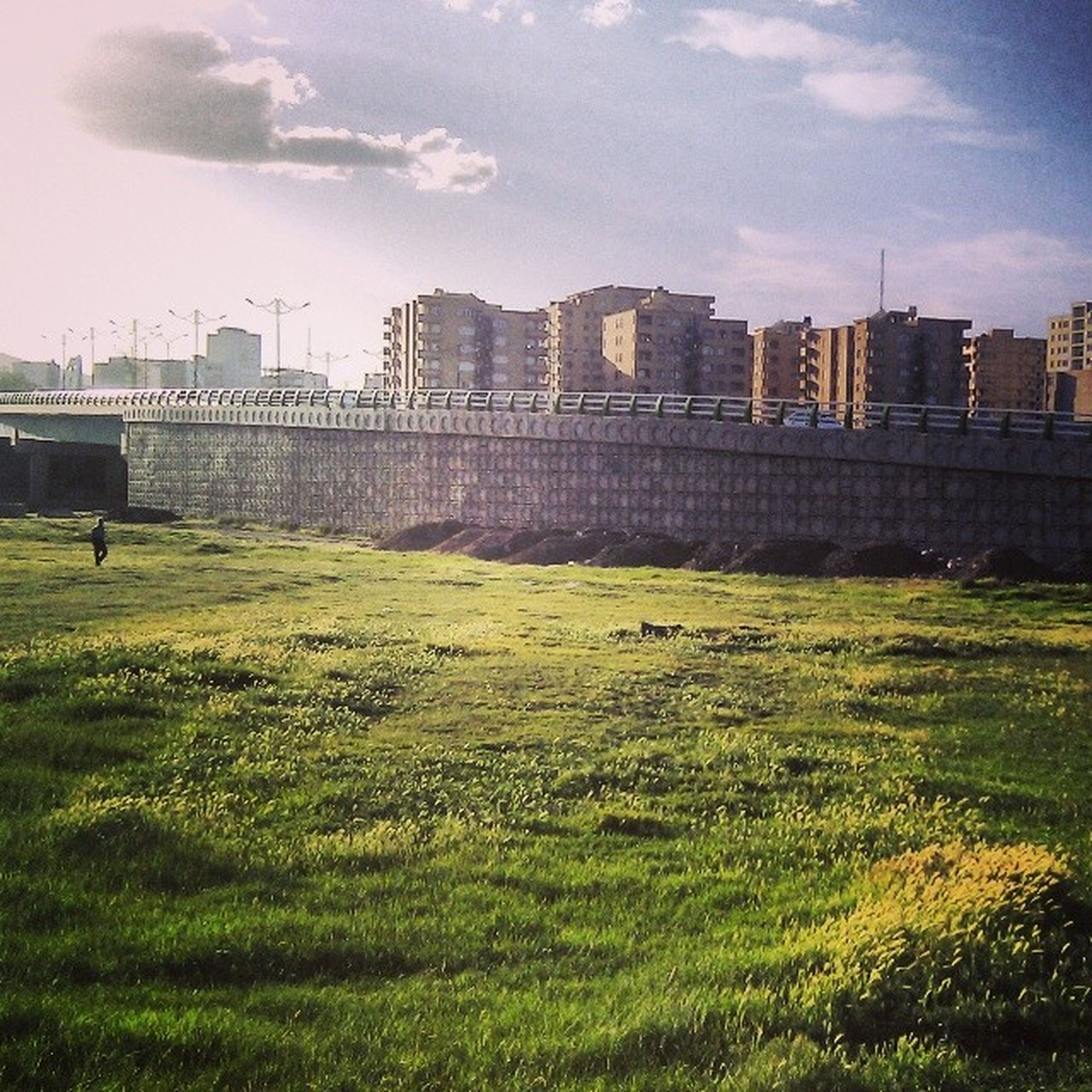 architecture, building exterior, built structure, grass, city, sky, field, building, green color, skyscraper, growth, tower, tree, lawn, grassy, sunlight, modern, day, cloud - sky, residential building