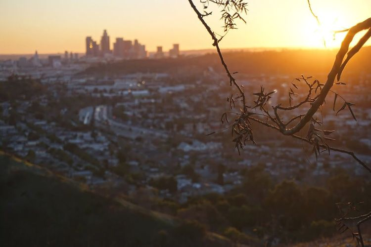 Cityscapes Pixxzo one of my favorite hiking trail in LA HighlandPark