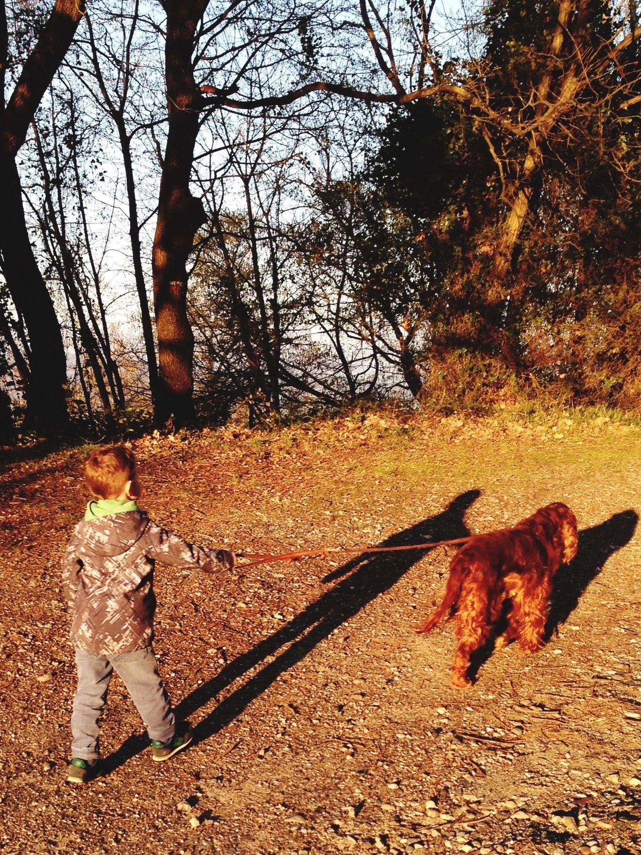 Kind Junge Hund GassiGehen Spaziergang Outdoor Photography EyeEm Best Shots EyeEm Nature Lover Dog Boy EyeEm Family❤ Taken By Me