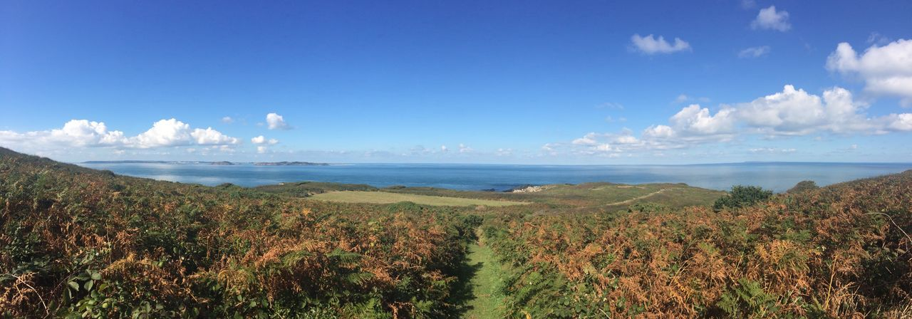 Panoramic taken from Eperquerie Common, Sark Common Hedgerow Tranquil Scene Sea Water Scenics Sky Tranquility Blue Beauty In Nature Horizon Over Water Non-urban Scene Vacations Tourism Nature Distant Seascape Panoramic Plant Travel Destinations Hill Cloud