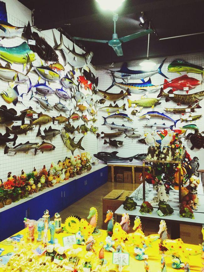 Aquarium :) 1537