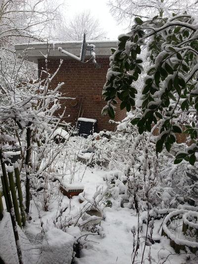 Snow in Düsseldorf. Lunch time. Duesseldorf Timetracking