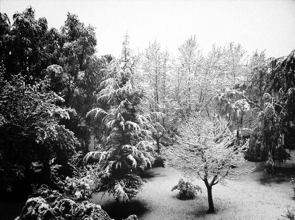 Blackandwhite Snow Nieve EyeEm Best Shots