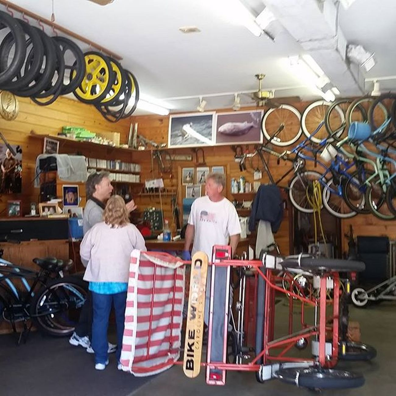 All kinds of bikes to ride at Bike World,open every day... Oceancitycool OceanCity Maryland Ocmd Ocfitness Bicycling