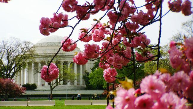 Thomas Jefferson Memorial Washington, D. C. Urbanexploration