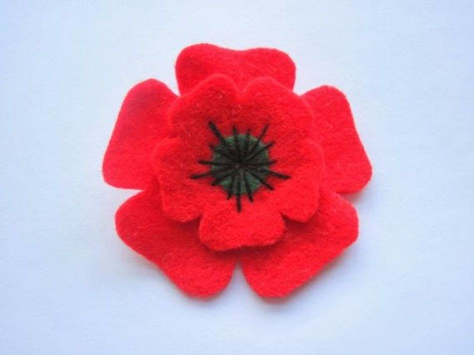Remembrance Sunday i wil remember and honer all the men women and children who have died in all our wars may they rest in peace we must never forget those who have died to keep us safe and free and pray that we can stop adding to their nuwmbers