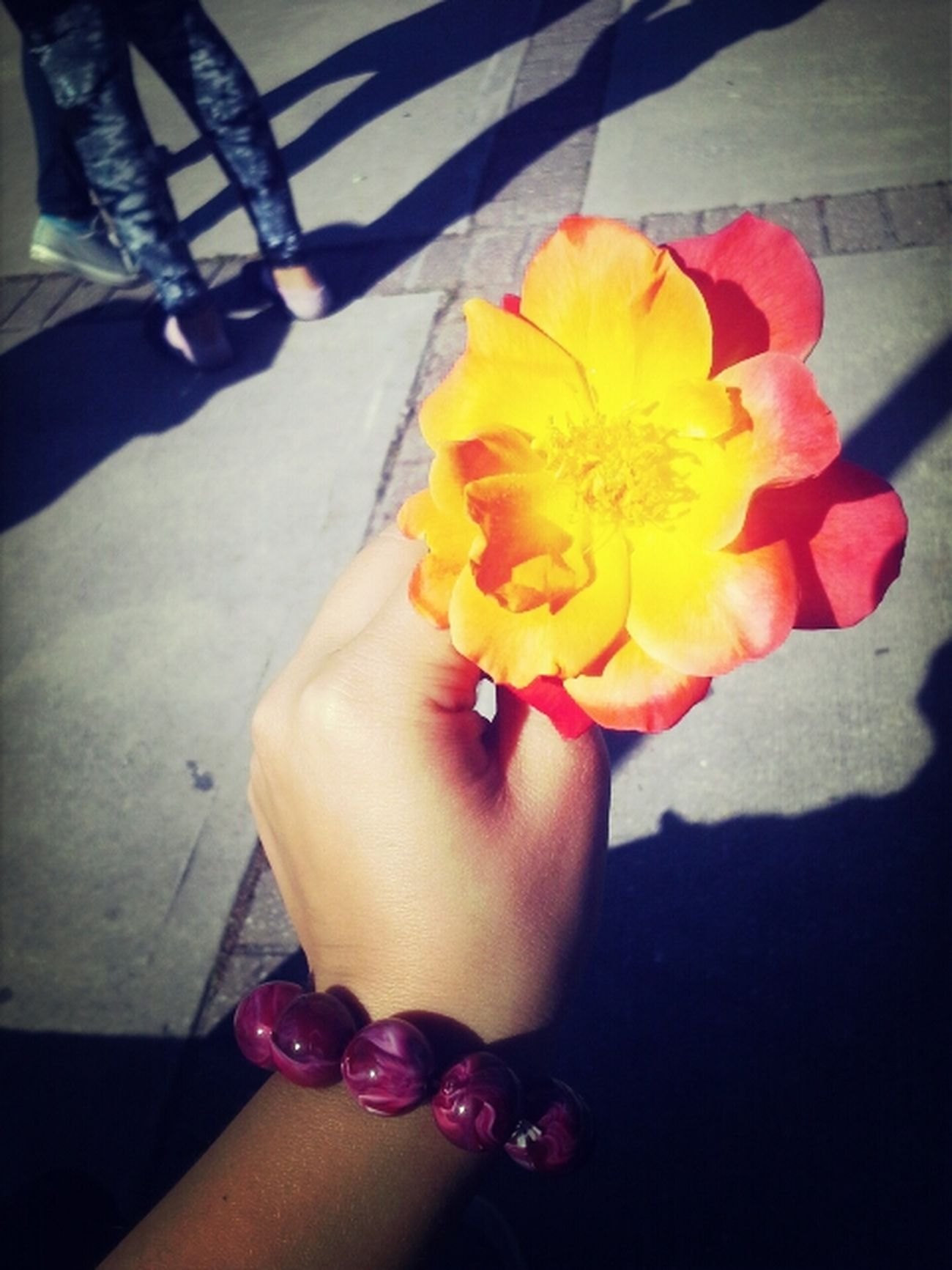 Thank you baby for this beautiful flower you picked me, And for my bracelet you bought me:) Oliver Baker
