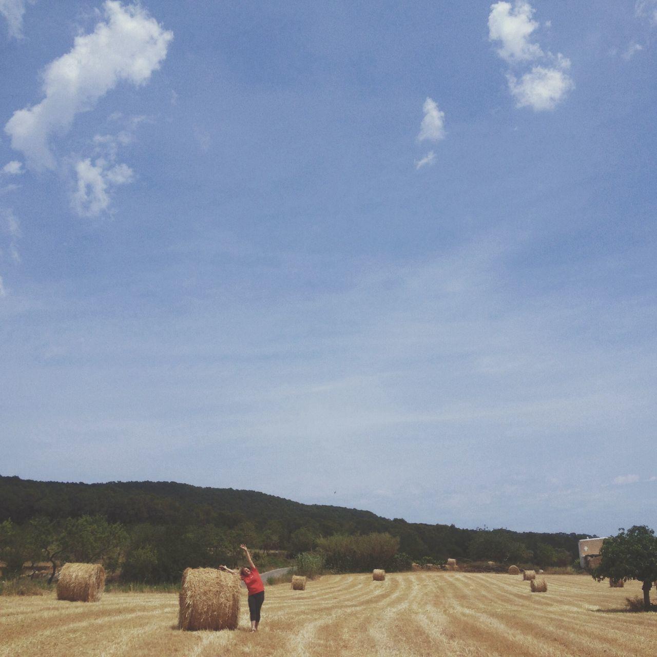 Beautiful stock photos of farm, Agriculture, Countryside, Crop, Farm