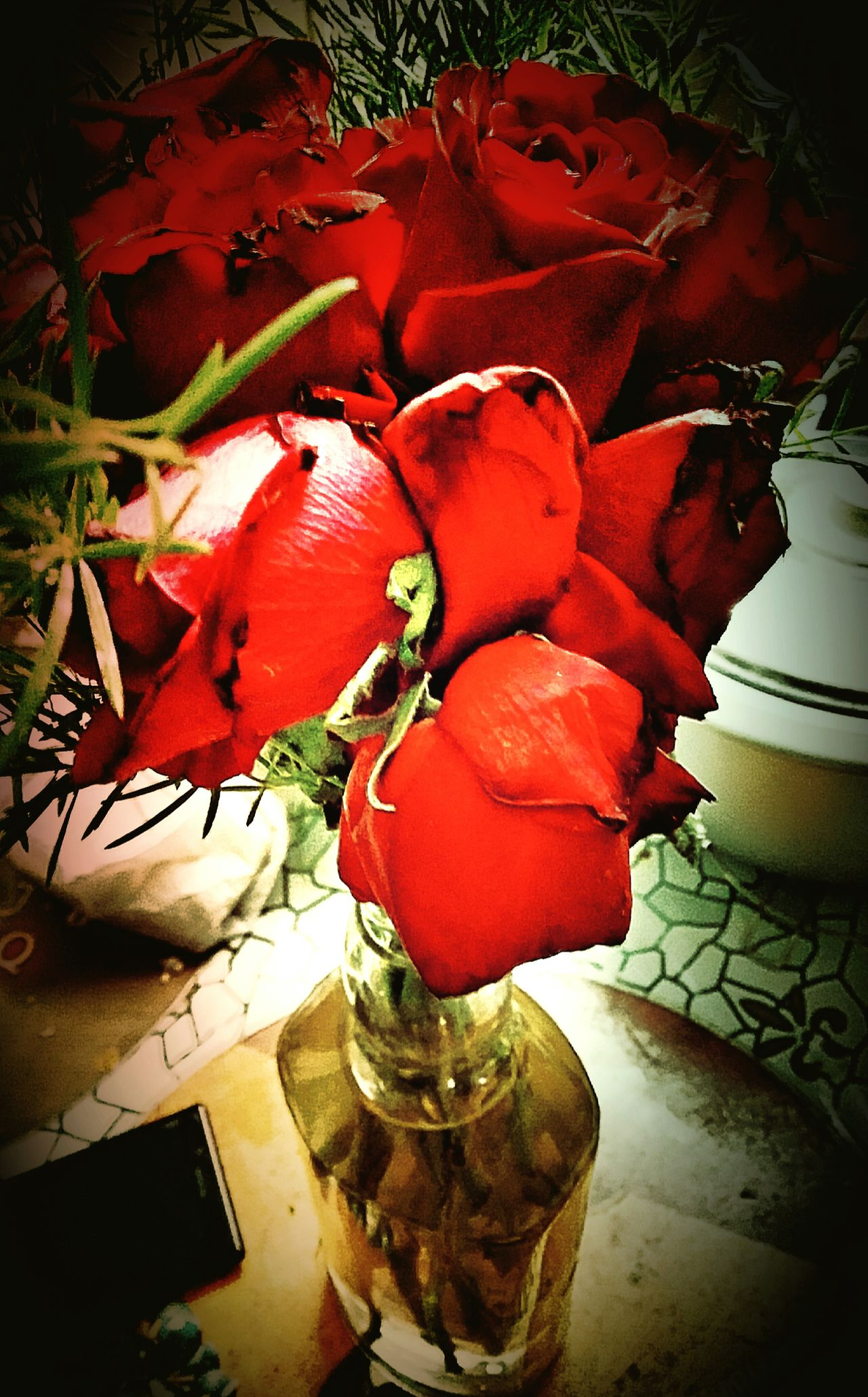 Flowers Red Roses Red Roses Flowers Kept In Bottle Valentine Gift February Showcase