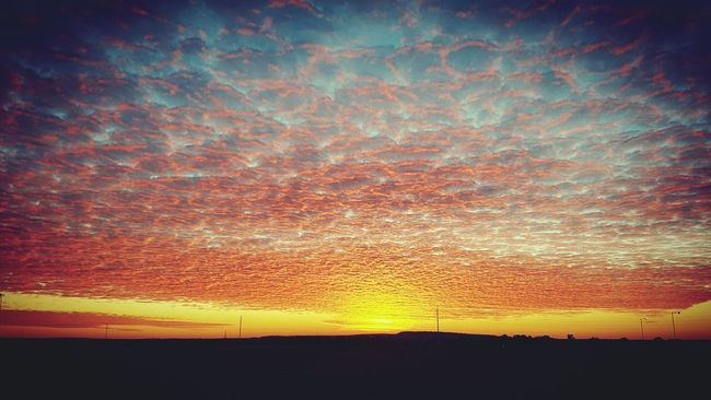 Fire in the sky 🌅 Sunset Photographer Rightplacerighttime QLD Galleryoftheday 4sale Eye4photography  EyeEm Best Shots Sunset Tranquil Scene Scenics Tranquility Orange Color Landscape Dramatic Sky Beauty In Nature Romantic Sky Idyllic Sky Nature Dark Majestic Tranquil Scene Scenics Tranquility