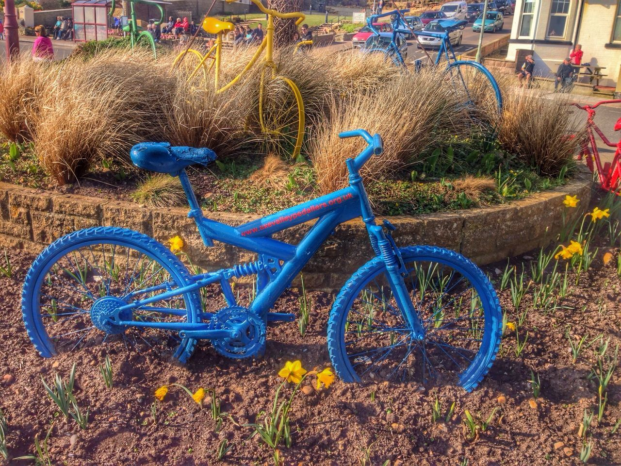bicycle, transportation, land vehicle, mode of transport, stationary, grass, field, outdoors, day, no people, blue, plant, spoke, flower, tire, bicycle rack, nature