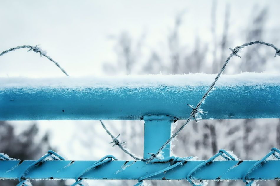 Showcase: February Cold Fence Barbed Wire Metal Frost Frosty Winter White Nature Keep Out Keep In Popular Photos Popular Sweden Europe