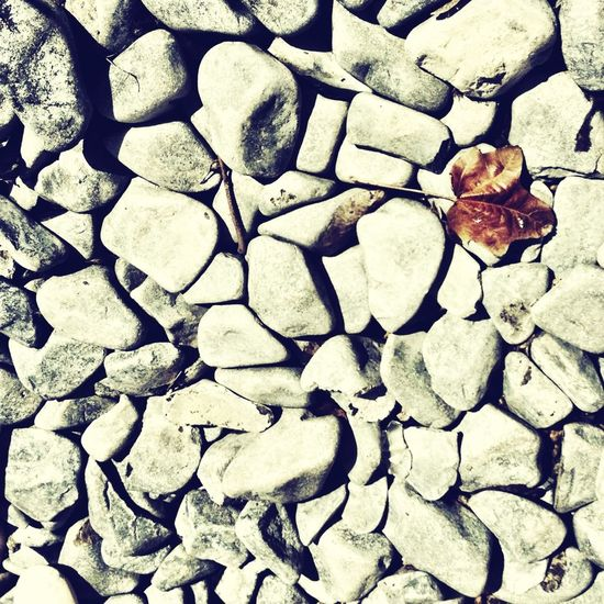 Memories Nature Stones Remembering OneLove
