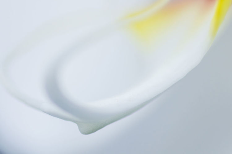 Backgrounds Close-up Day Drink Food And Drink Freshness Milk No People Studio Shot White Background