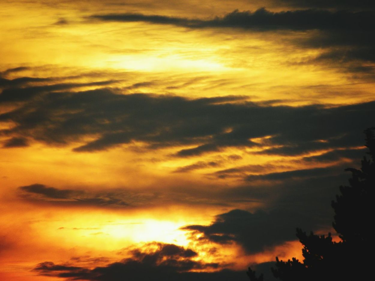 Sunset Sky Cloud - Sky Scenics Nature Silhouette Beauty In Nature Dramatic Sky No People Tranquility Outdoors Day Vendée France🇫🇷 Nikon Coolpix P90