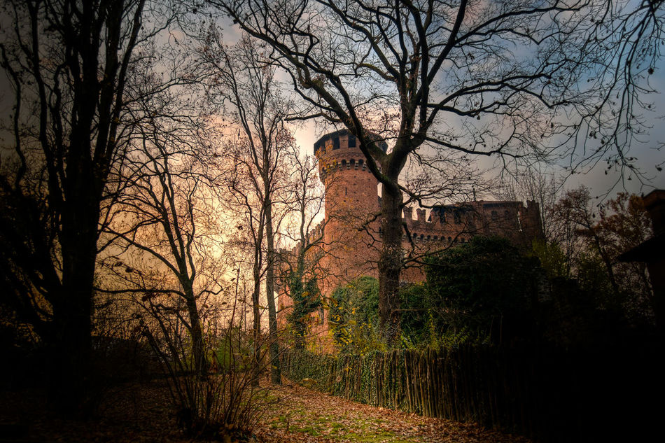 Ancient Architecture Building Exterior Built Structure Castle Catello Medioevale History Italy❤️ Medioeval Medioeval Castle Medioevo Mystery Old Parco Del Valentino Park Piemonte The Past Torino Torinoélamiacittá Tree Turin Turin Italy