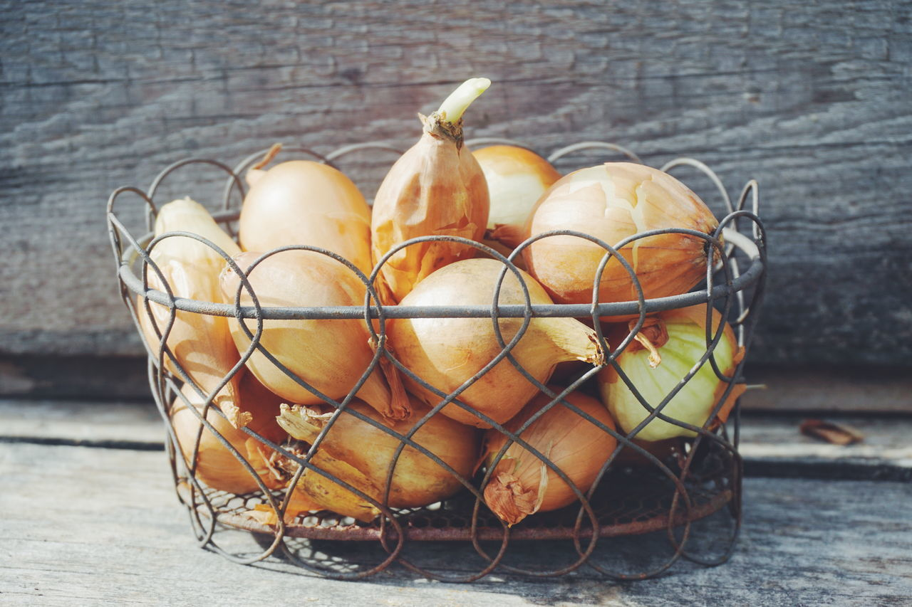 Cultivation and planting of onions Close-up Cultivated Cultivation Day Food Freshness Greenhouse No People Onion Onions Outdoors Plant Planting Plants Rustic Rustic Style Shabby Chic Spring Springtime Vegetable Vegetables