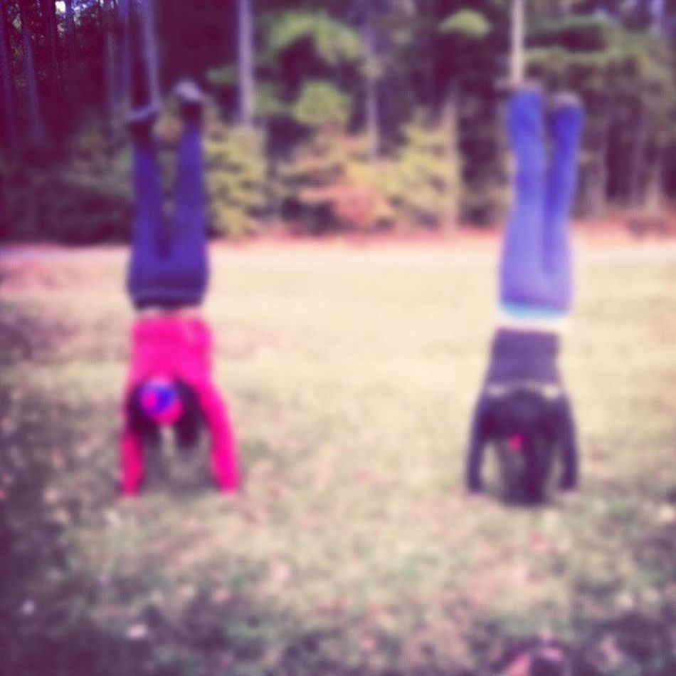 Hit A Handstand At Harrowgate Park (;