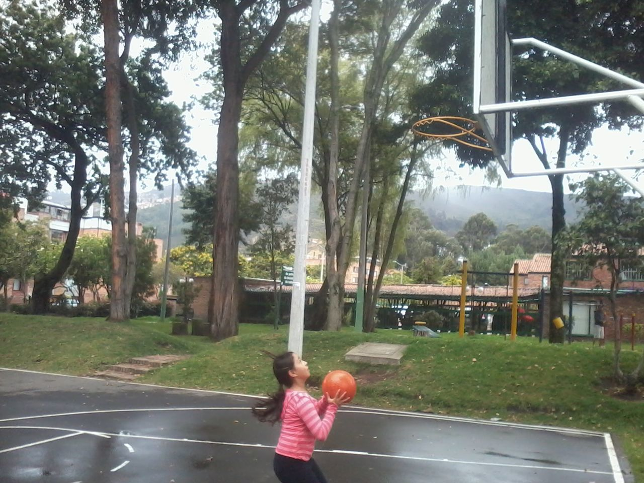 tree, real people, day, one person, childhood, casual clothing, boys, playing, growth, lifestyles, basketball hoop, outdoors, basketball - sport, nature, court, sky, people