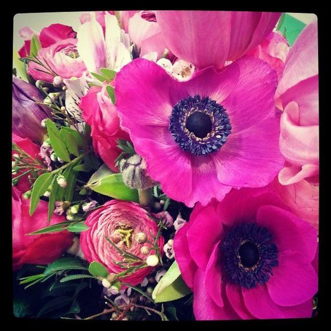 Blumen von E.ON :) Abschlussprüfung 2014 Ausgelernt