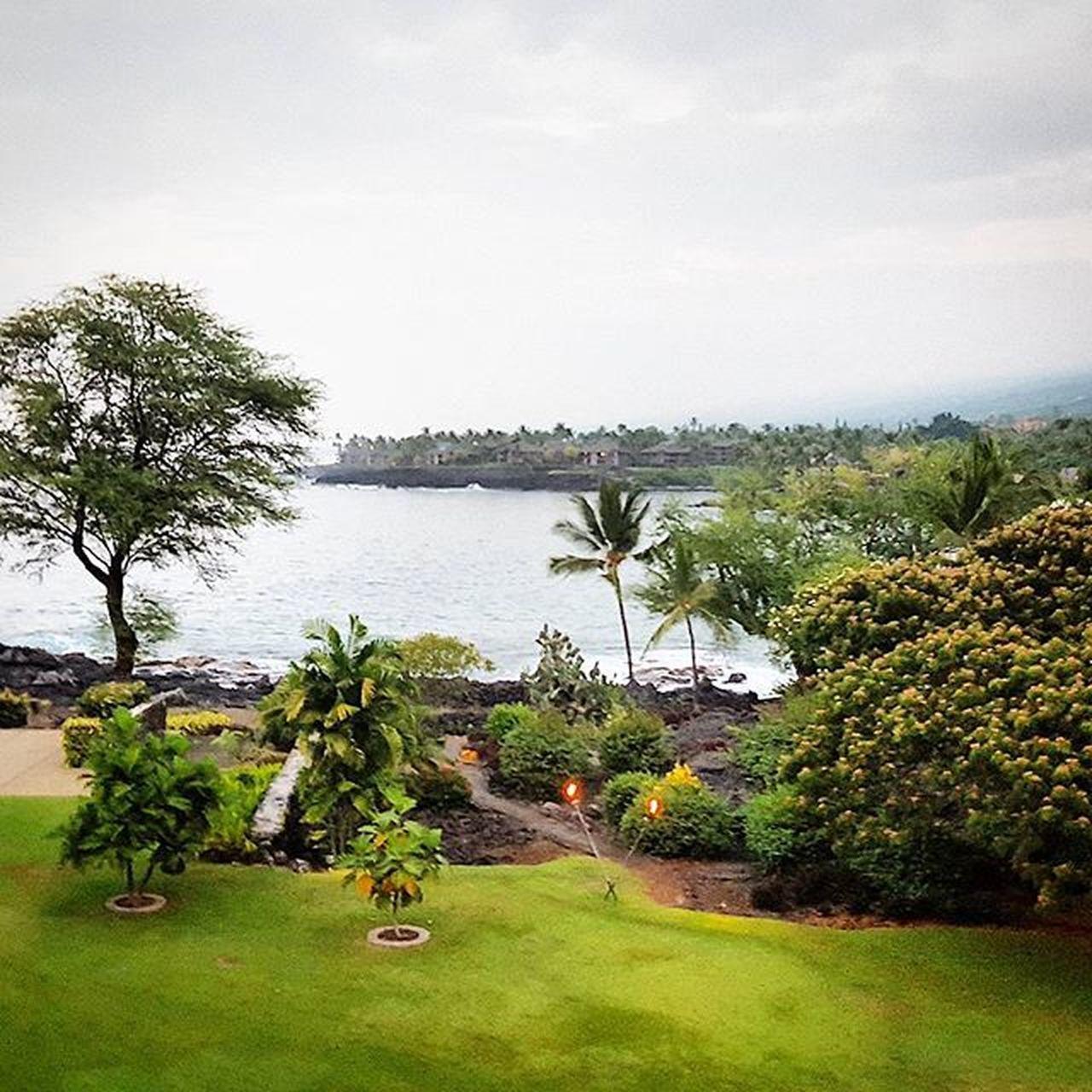 Kona Paradise NeverLeaving Hawaii